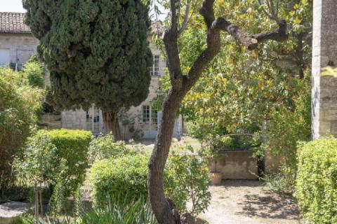 Jardin du procureur © Alex Nollet
