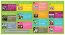 Programme complet  de la 9ème édition de Rendez-vous aux Jardins à Villeneuve lez Avignon