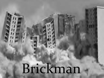 Brickman © DR