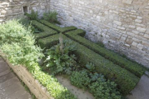 Jardin des simples © Alex Nollet